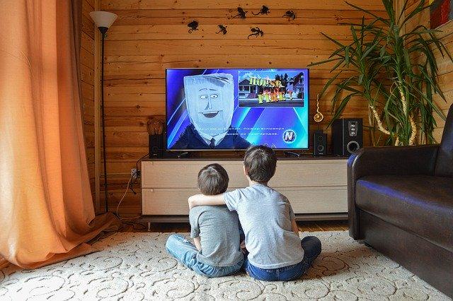 兄弟でテレビを観る